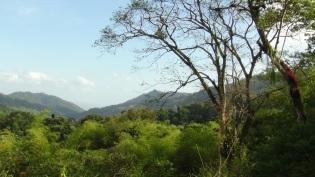 lysanne-snijders-trinidad